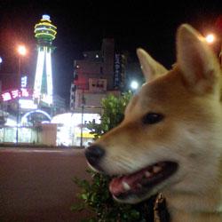 080529-tsutenkaku.jpg