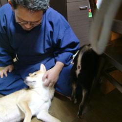 20081029-gaku.jpg