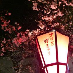 20090331-kana-2.jpg