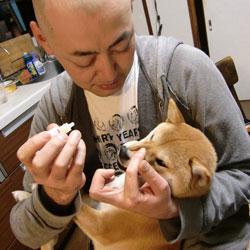 20090413-megusuri.jpg