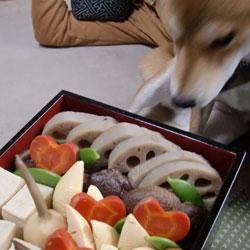 20100101-osechi-1.jpg