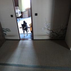 20100814-jii-4.jpg