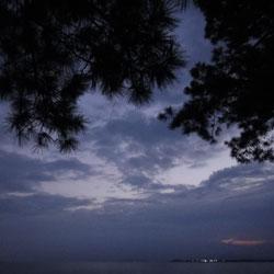 20100902-biwa-2.jpg