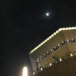 201011119-moon.jpg