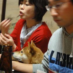 20110102-koki-6.jpg