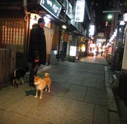 20110316-hosenji.jpg