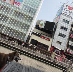 20110519-asa.jpg