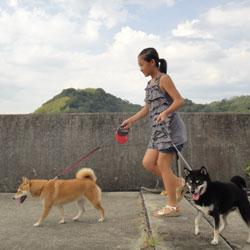 20110813-mitsu-2.jpg