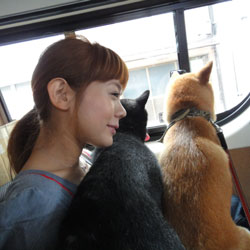 20110922-hannyu-2.jpg