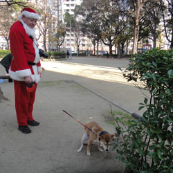 20111218-santa-7.jpg