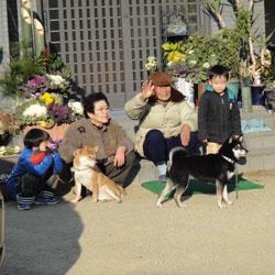 20120102-kado-7.jpg