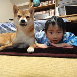 20120102-kotatsu-1.jpg