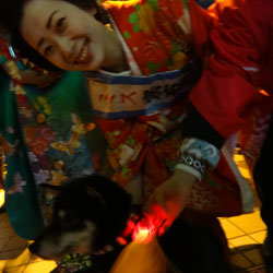 20120110-night-2.jpg