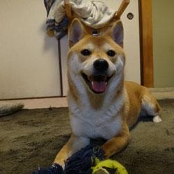 20120306-smile.jpg