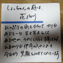 20120619-aji-2.jpg