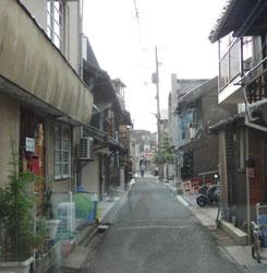 20120712-habu-5.jpg