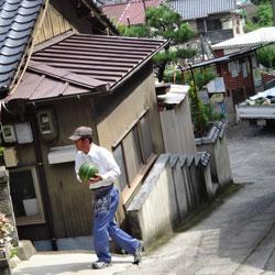20120715-hiru-3.jpg