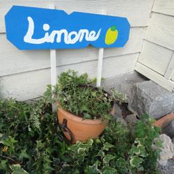 20121010-lemon-2.jpg