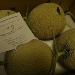 20121025-melon-1.jpg