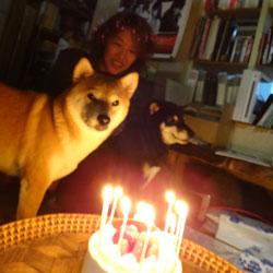 20121107-yama-1.jpg