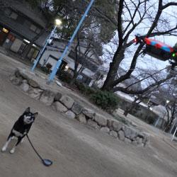 20130120-hiko-3.jpg