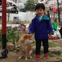 20130331-sakura-4_.jpg
